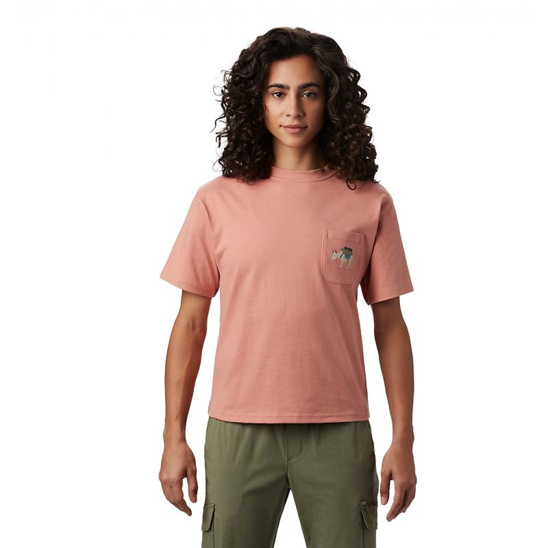 Mountain Hardwear Hotel Basecamp Short Sleeve Pocket - T-Shirt - Damen